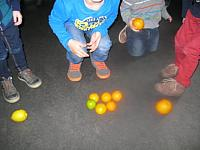 thema citrusvruchten 2015 004 (Small)