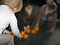 thema citrusvruchten 2015 006 (Small)