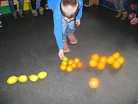 thema citrusvruchten 2015 008 (Small)