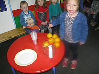 thema citrusvruchten 2015 024 (Small)