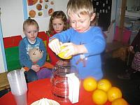 thema citrusvruchten 2015 026 (Small)