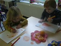 thema citrusvruchten 2015 057 (Small)